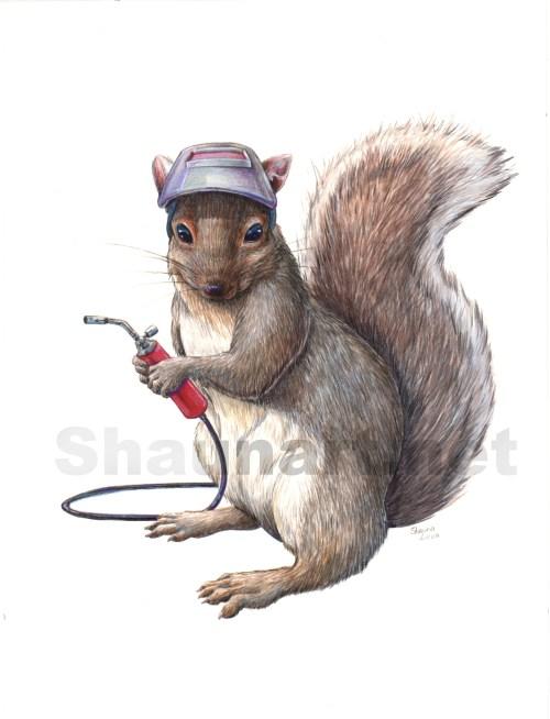 squirrelwatermark