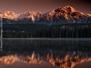 Mildred Lake Sunrise