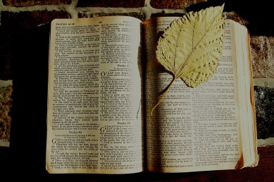 bible-1166261_1920