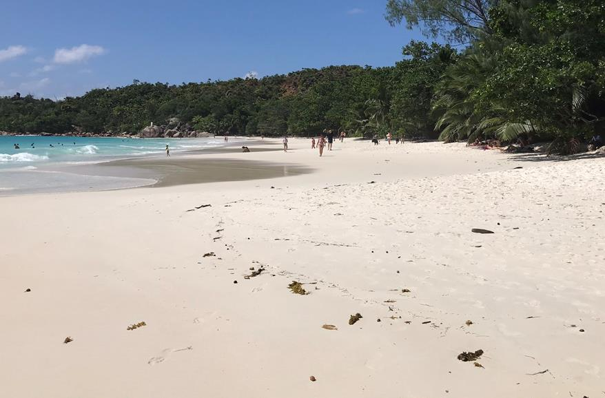 Grand Anse - the white beach of Praslin