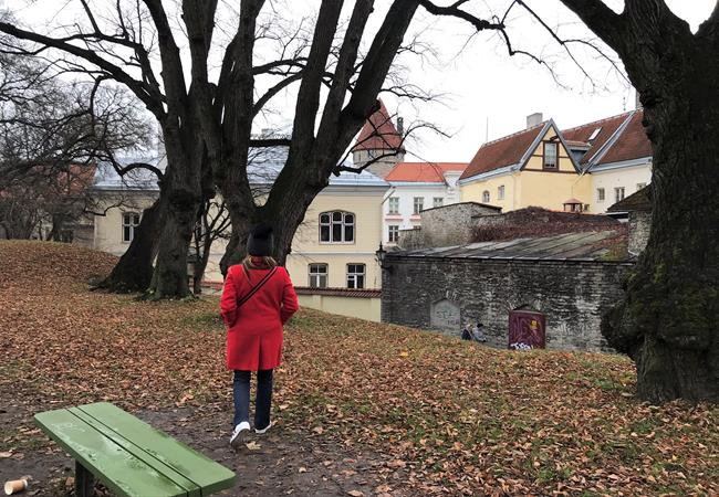 Wandering around Tallinn in the winter