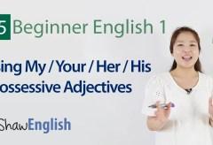 Possessive Adjectives