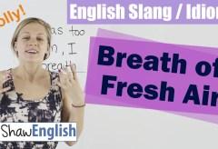 English Slang / Idioms: Breath of Fresh Air