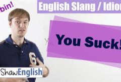 English Slang / Idioms: This Sucks! 관용어와 숙어의 학습