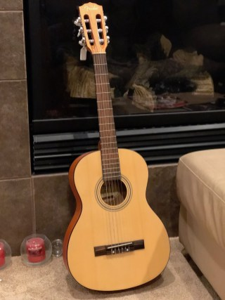 Shawn Realty Guitar Giveaway Fender ESC80