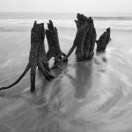 Tree Stumps on Beach, Nikkor 16-35mm VR @ 20mm, ISO 100, 2 secs. @ f/22, Nikon D700