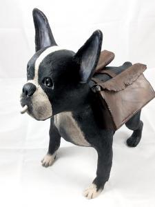 Smokey the Trench Dog
