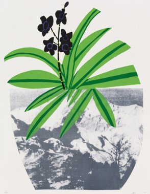 Jonas Wood Plant Pop Art