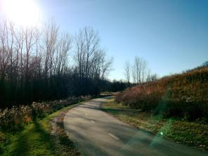 Bike Dog Trails Hyland Lake Park Reserve Minnesota