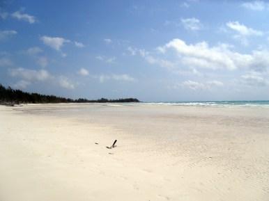 Gold-Rock-Beach-Grand-Bahama