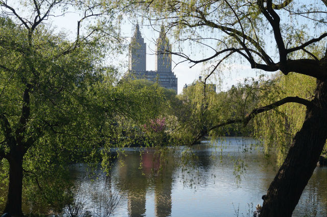 My Weekend in New York City - Lake in Central Park