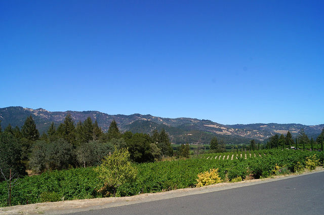 Napa Valley - The valley from Castello di Amorosa