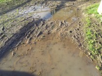 Perhaps not through that mud...