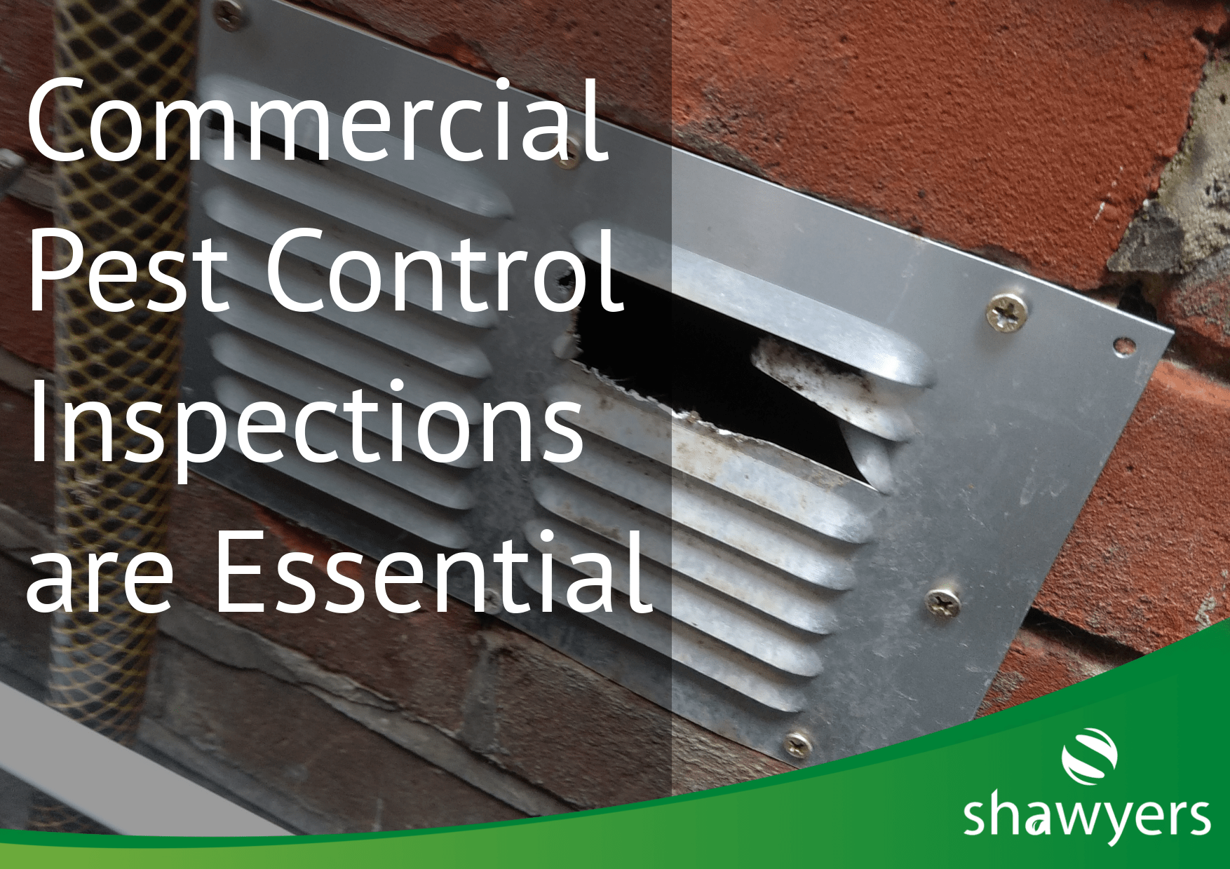 commercial pest inspections