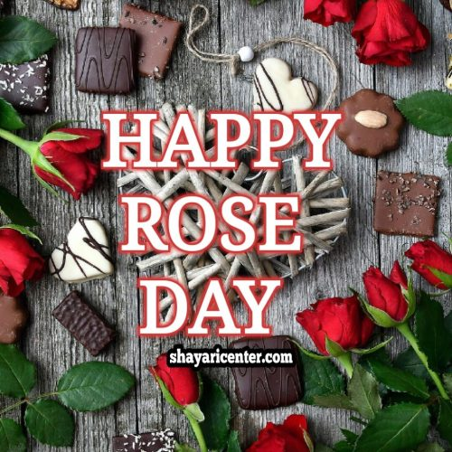 7th Feb rose day