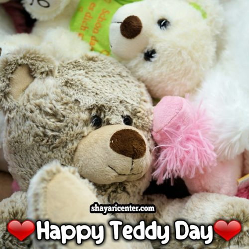 special day of teddy bear
