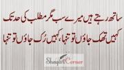 Matlabi Dost Shayari Poetry in Urdu/Hindi