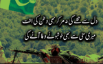 *New* 23 March Poetry in Urdu (23rd Youm e pakistan Shayari)