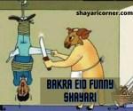 Bakra Eid Funny Shayari in Urdu/Hindi (Jokes on Bakra Eid)