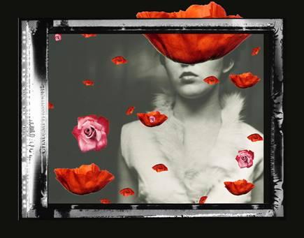 Gavin Benjamin | Shayne Gallery