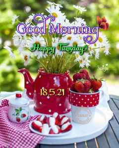 #Good Morning🌄Good Mornin Happy Tuesday ing YA Sanju 1Good Morning🌄 By ꧁᳀᯽𝑺𝒂𝒏𝒋𝒖᯽᳀꧂ on ShareChat – WAStickerApp, Status, Videos and Friends
