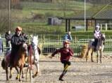 A terre à cheval