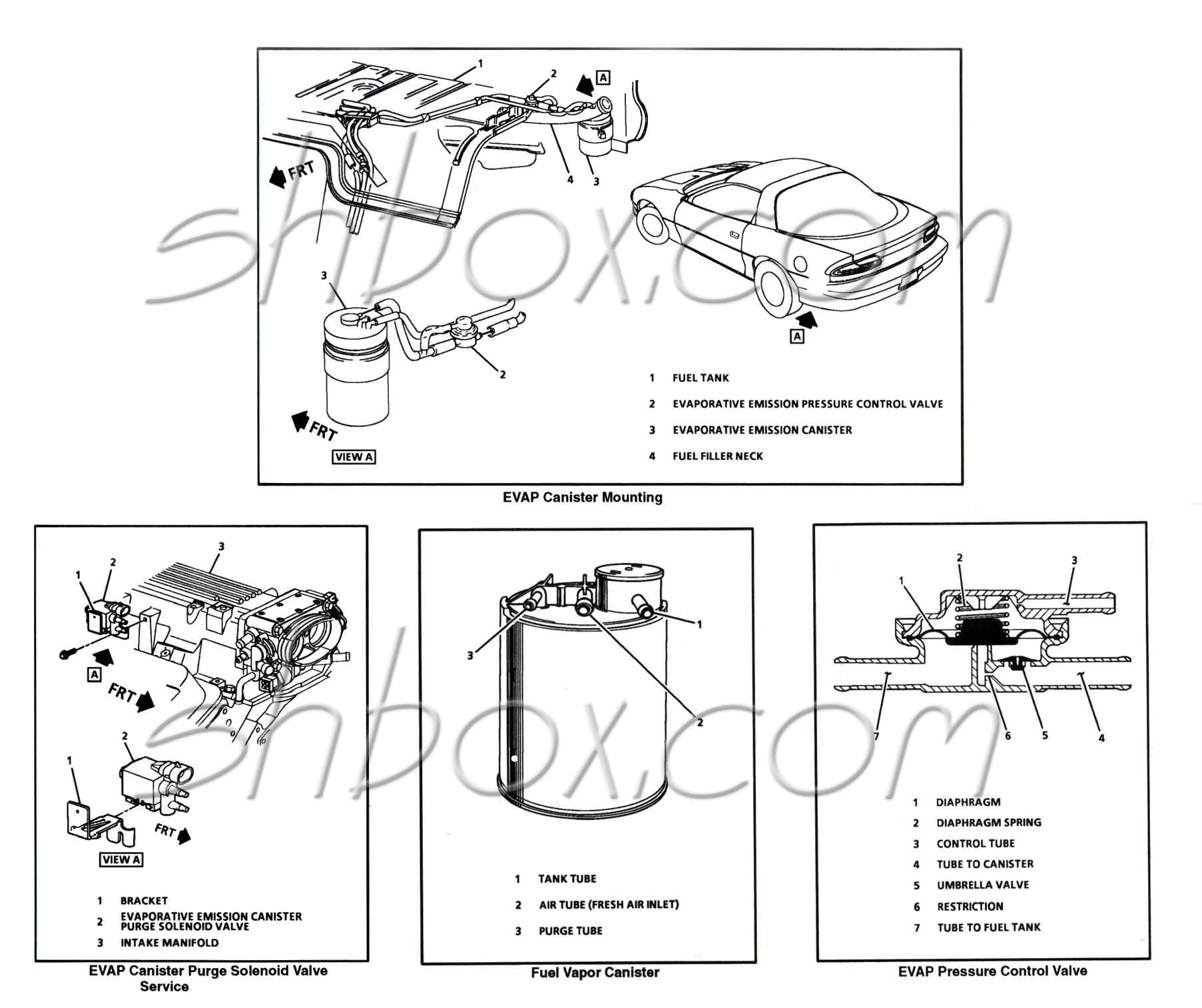 Chevy Impala Fuel Lines Diagram Free Engine