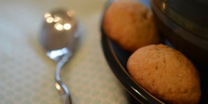 Fennel Seed & Chai Cookies