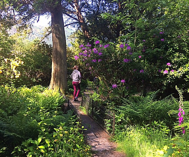 top picnic spots / she-eats / bassenthwaite