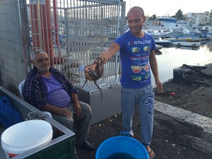 friendly sicilians show us their catch of the day, here the octopus...