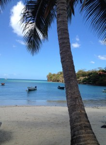 the obligatory picture with white sand beach, palm tree and fishing boats ;-)