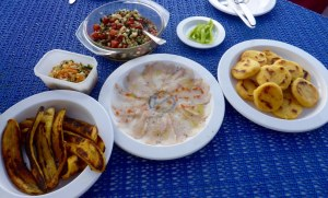 latein american and italian lunch - platano frito, carpaccio from the Mahi Mahi, tomato salad and arepas