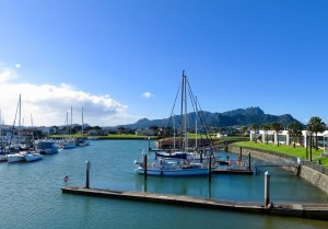 Marsden Cove Marina NZ