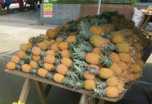 Market Savusavu