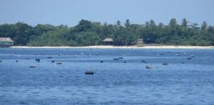 Morotai fish farm