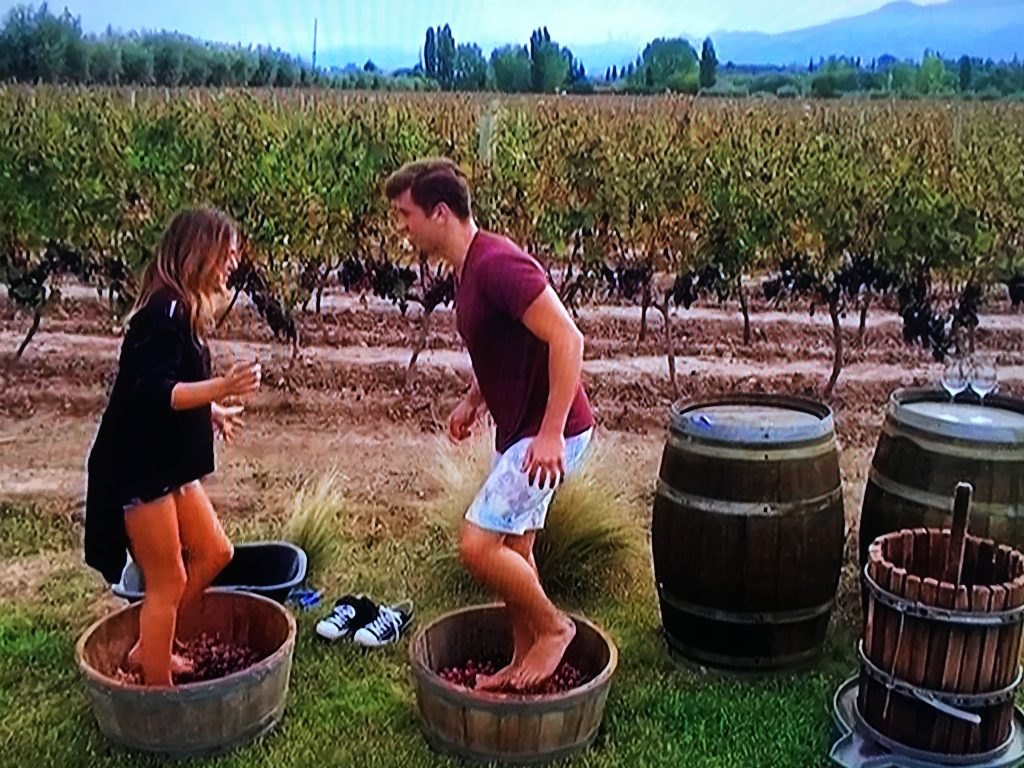 jojo and jordan stomping grapes on bachelorette