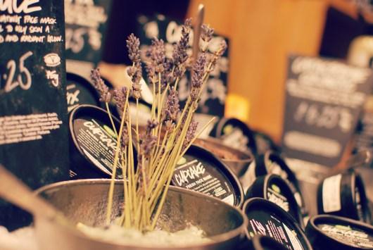 Lush Blogger Event | Bristol | #bbloggers