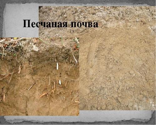 песчаный-грунт