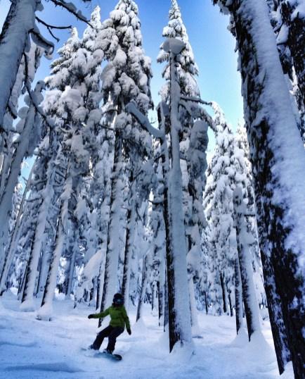 Mt Bachelor, Oregon. January 2016
