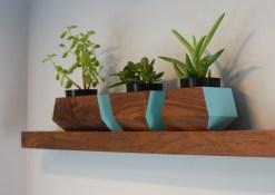 Floating walnut shelf and modular planter