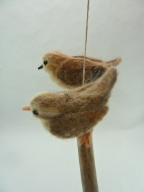 Wrens on Branch