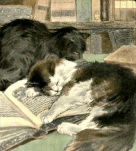 catsleepingonbookpublicdomain