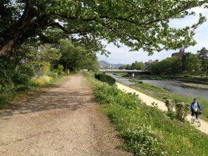 Kamogawa River, Kyoto, May 9th, 2014