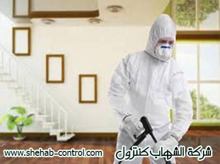 شركة رش مبيدات بجازان