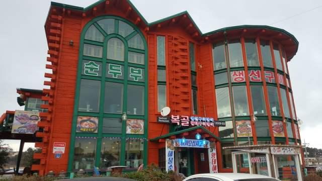 korea trip_day 2_teddy bear museum mt soerak_soeraksan national park_vivaldi ski park (66)