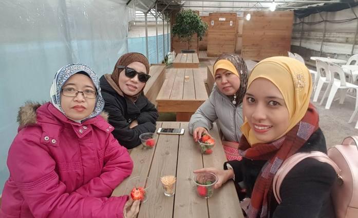 korea trip_day 3_strawberry farm_diy kimchi_hanbok_everland theme park