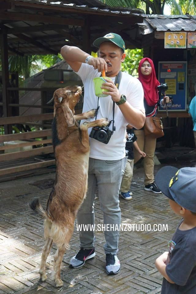 FARM IN THE CITY MALAYSIA, PETTING ZOO TERBAIK UNTUK ANAK-ANAK (32)