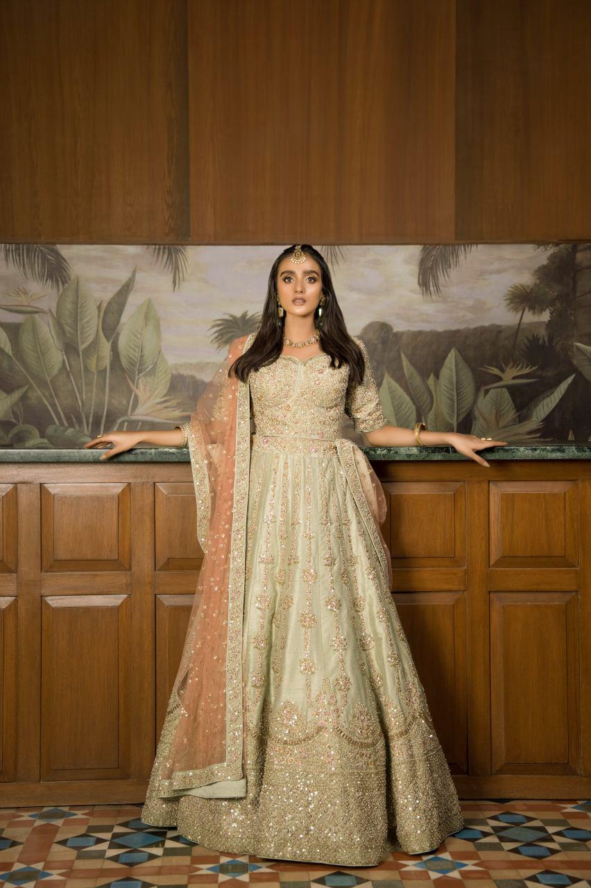 shk-858-Best Walima Bridals Dresses