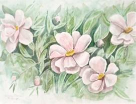 """Tree Peonies, watercolor, 16"""" x 20"""""""