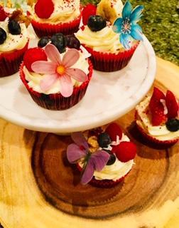IMG_8265 cupcakes